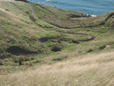 Anaconda MTB Track, Godley Head
